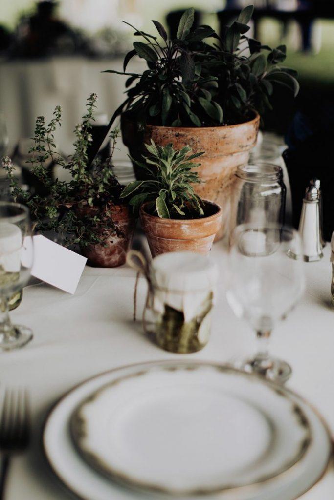How to Have a Zero-Waste Wedding - Addison Jones Photography